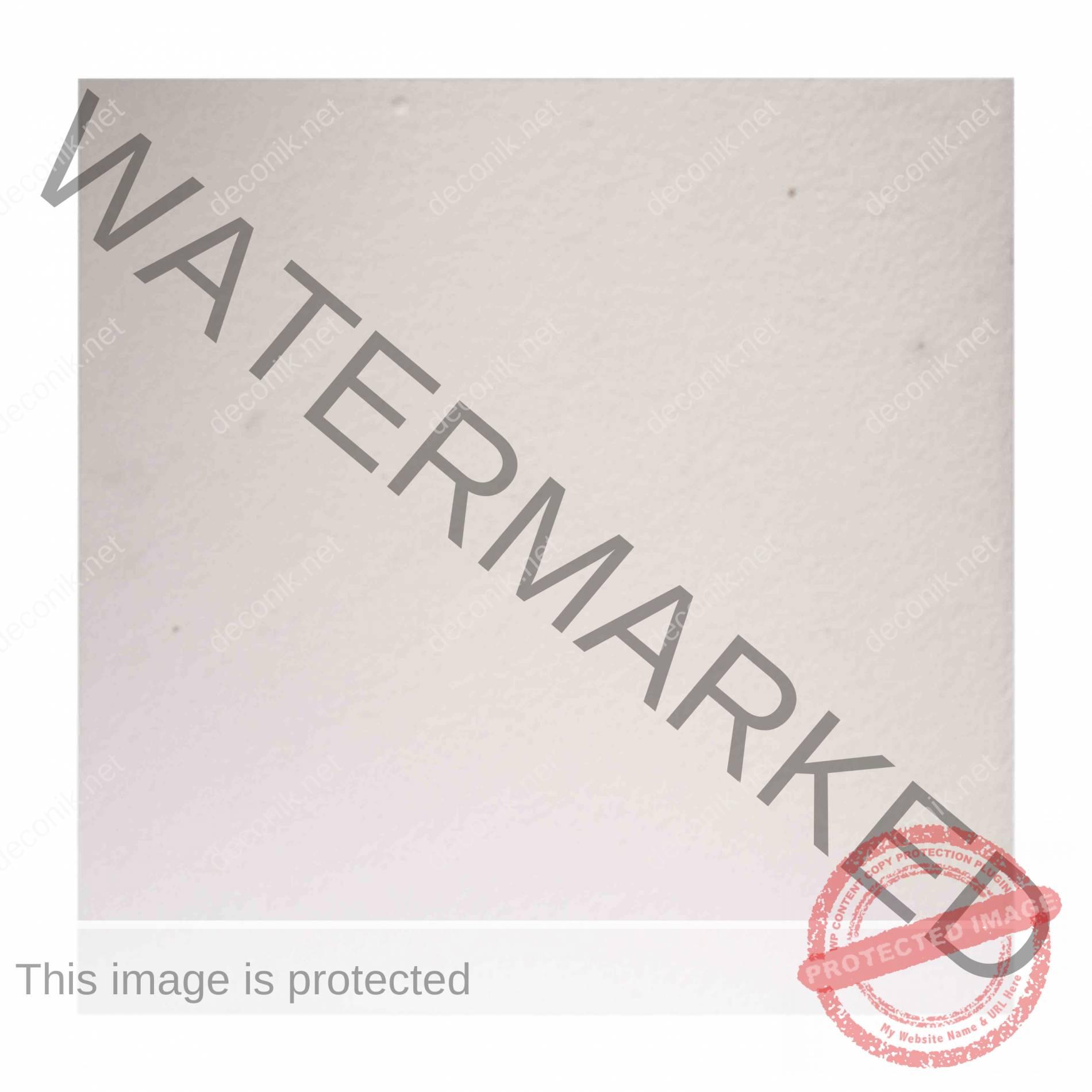 zonia-diffusion EPS-3